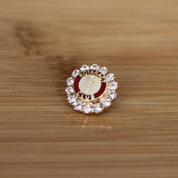 Pin for women with stones Rotaract