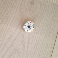 Rotary 2016-17 Theme Lapel Pin, 30mm